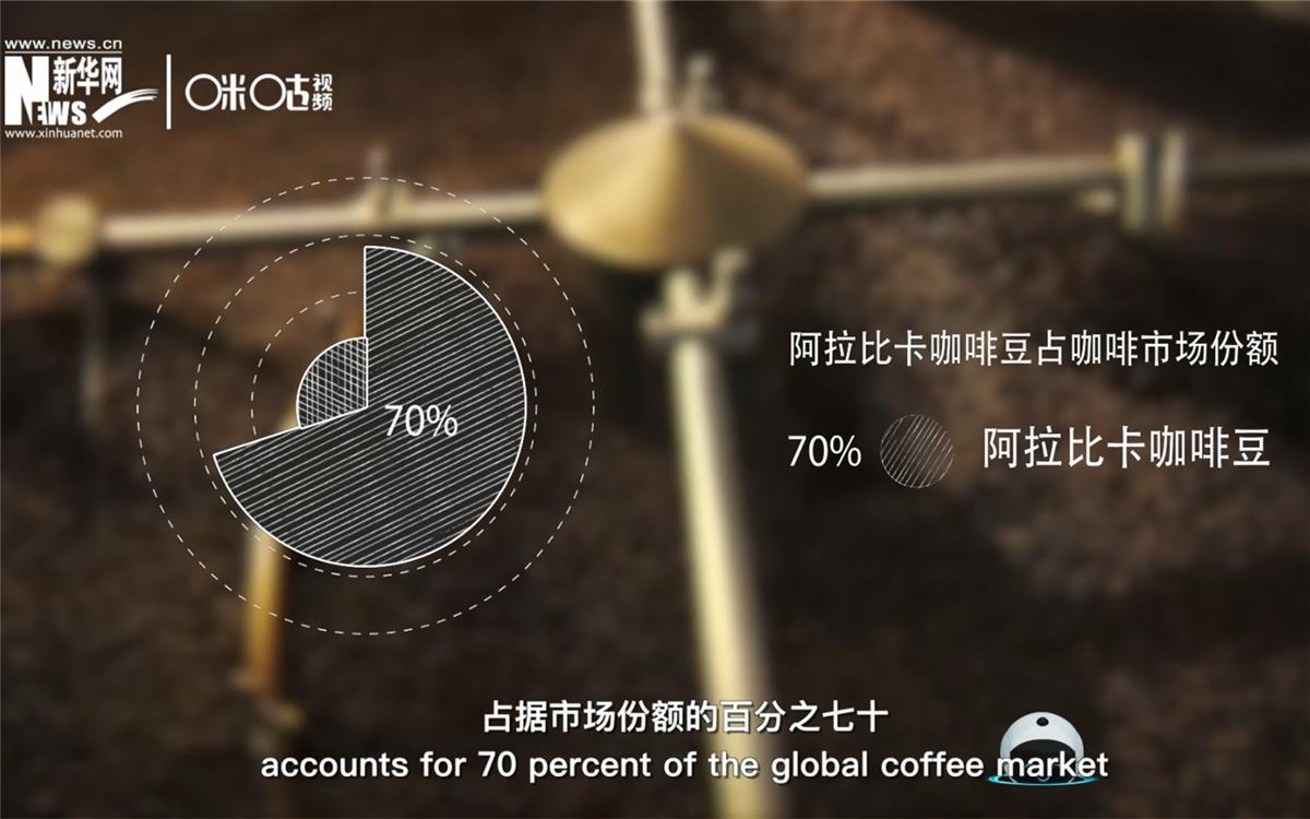 全世界70%的咖啡都由小农户种植生产