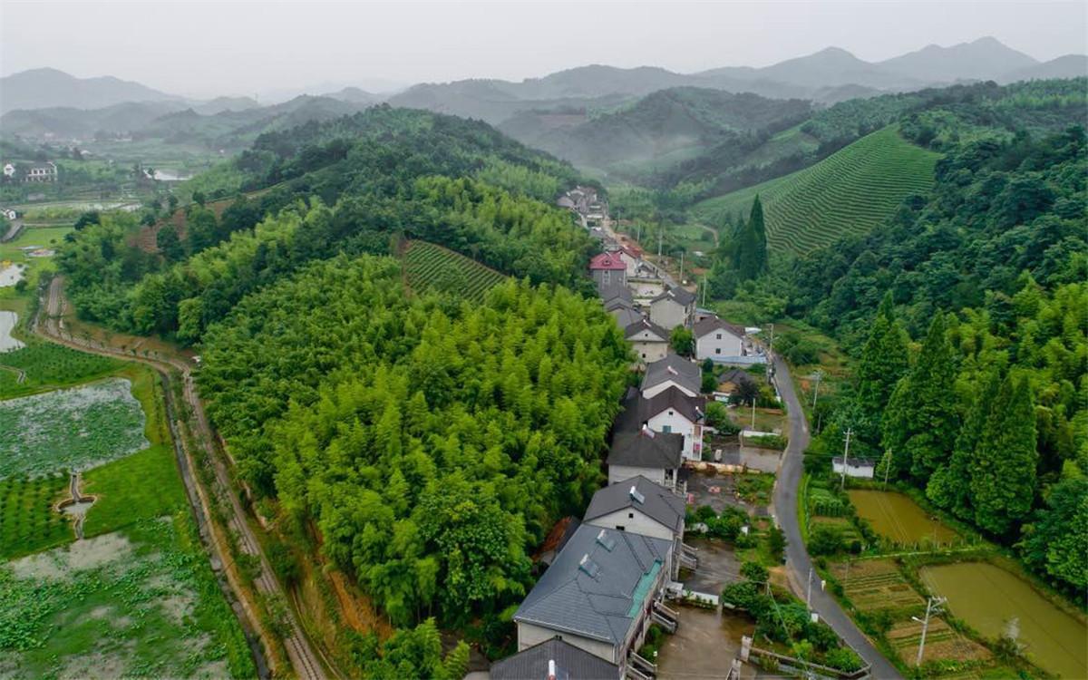 """从2003年起,浙江省开展了""""千村示范、万村整治""""工程"""