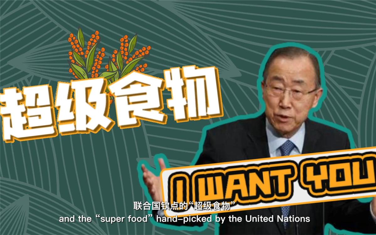 """联合国将藜麦视为抗击饥饿的""""超级食物"""",大力推广"""