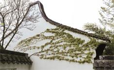 حديقة بتصميم المصممين الصينيين في نيويورك