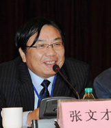 张文才:互联互通项目将助力斯里兰卡在区域和全球价值链中找到坐标
