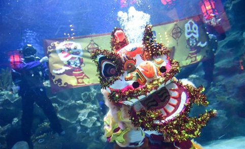 Malaysia's Aquaria KLCC to give underwater lion dance performance during spring festival season