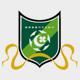 杭州綠城隊