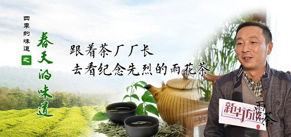 跟著茶廠廠長去看紀念先烈的雨花茶
