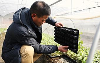提高農業競爭力需提升農産品質量