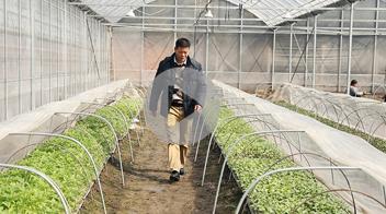 基層代表委員心裏話:讓更多農戶學會瓜果種植新技術