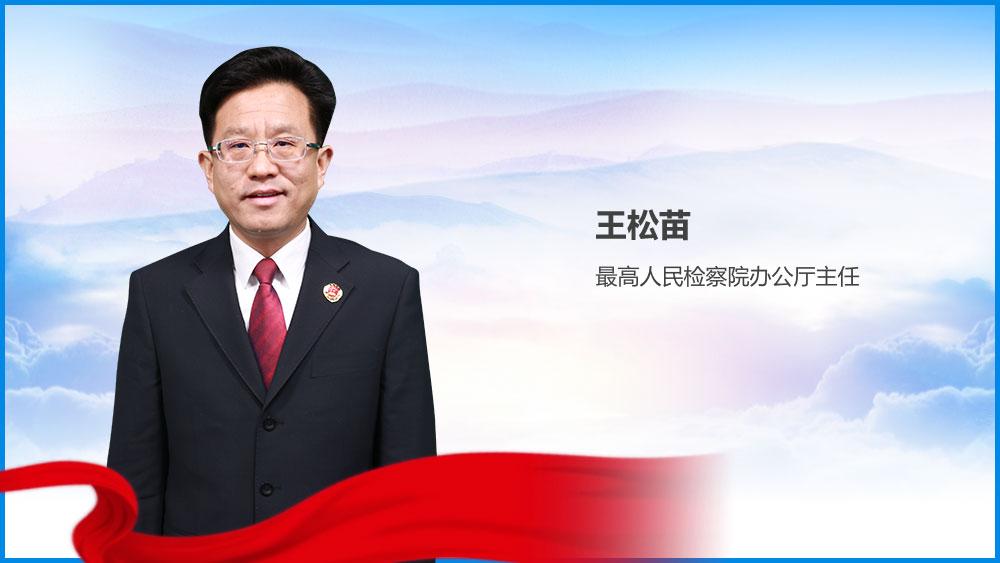 王松苗解讀最高檢工作報告