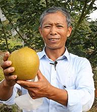 余碧其:种梨三十余载 改良梨种助脱贫