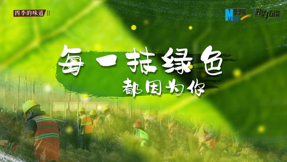 千年秀林,每一抹綠色都因為你