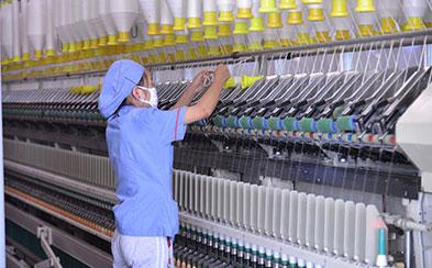 纺织业加强与棉花产业合作 共同打造国棉品牌
