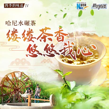 哈尼水碾茶:縷縷茶香 悠悠我心
