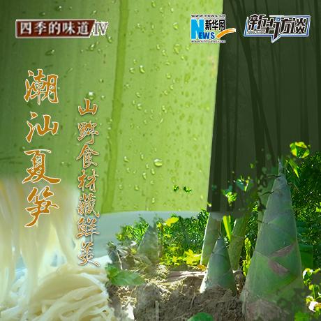 潮汕夏筍:山野食材藏鮮美