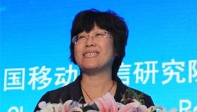 """魏冰:依托信息化能力 IT企業逐浪""""互聯網+醫療健康""""産業"""