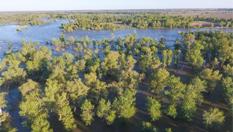 航拍新疆額爾齊斯河汛期