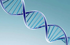 重要成果!中国诞生世界首例神经疾病基因敲入猪