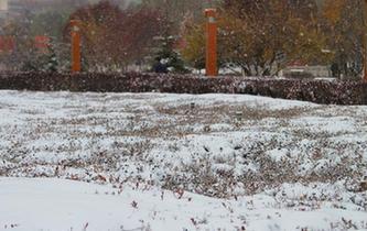 青海立冬降暴雪 民眾出行受影響