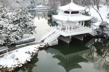 合肥:環城公園雪景美