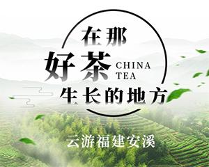 """福建:安溪攜手新華社""""快看""""開展""""在那好茶生長的地方""""主題直播活動"""