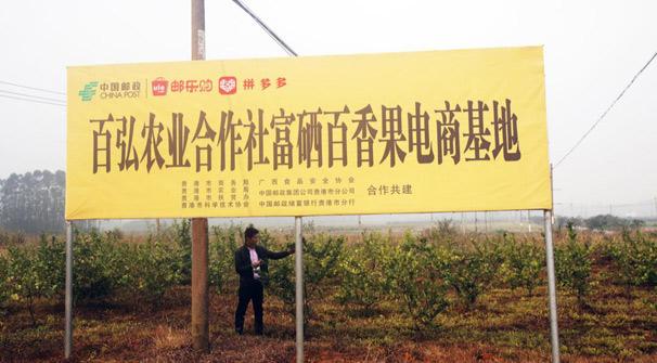 拼多多與中國郵政達成戰略合作,鞏固全國農産品上行極速通道