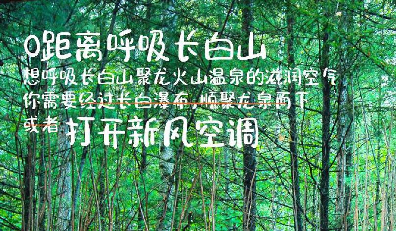 長白山旅遊股份×京東集團特惠酬賓!聯手打造清心洗肺度假之旅