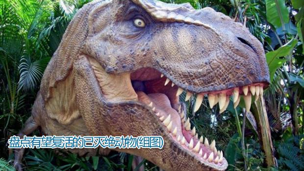 已灭绝动物大全 已灭绝动物大全大图 灭绝动物大全