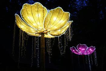 自貢彩燈閃耀羅馬尼亞錫比烏國際戲劇節