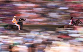 錫耶納舉行傳統賽馬節