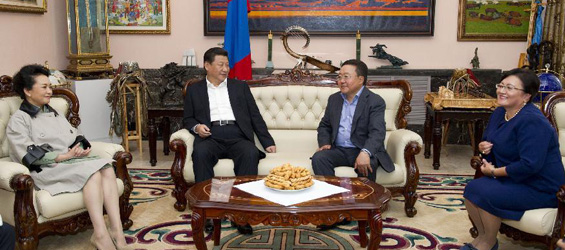 Chinese president holds talks with Mongolian counterpart in Ulan Bator