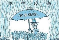 我國農業保險業務規模居全球第二