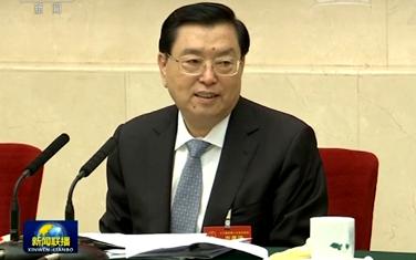 張德江參加香港代表團 澳門代表團審議