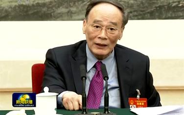 王岐山參加青海代表團審議