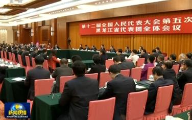 張德江參加黑龍江代表團審議