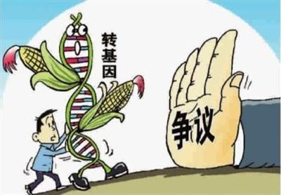 韓長賦:我國未批準任何一種轉基因糧食作物商業化種植