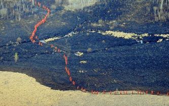 內蒙古呼倫貝爾那吉林場火災撲救取得決定性進展