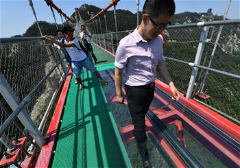玻璃懸索橋亮相沂蒙山