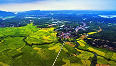 俯瞰江西鉛山秋後稻田:色彩斑斕美不勝收