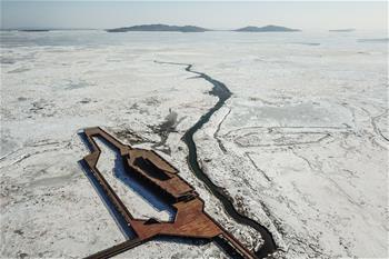 直擊遼東灣海冰