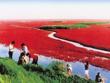紅海灘風景區