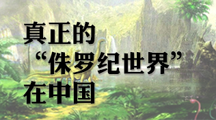 """真正的""""侏罗纪世界"""",在中国"""