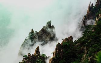 秋雨過後安徽黃山雲霧繚繞宛如仙境