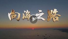 从壮乡巨变看中国发展的力量