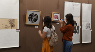 南京传统艺术作品展在地拉那举行