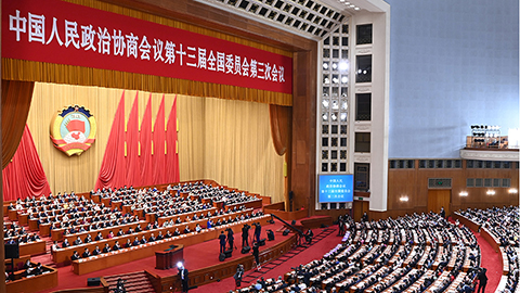全國政協十三屆三次會議第二次全體會議