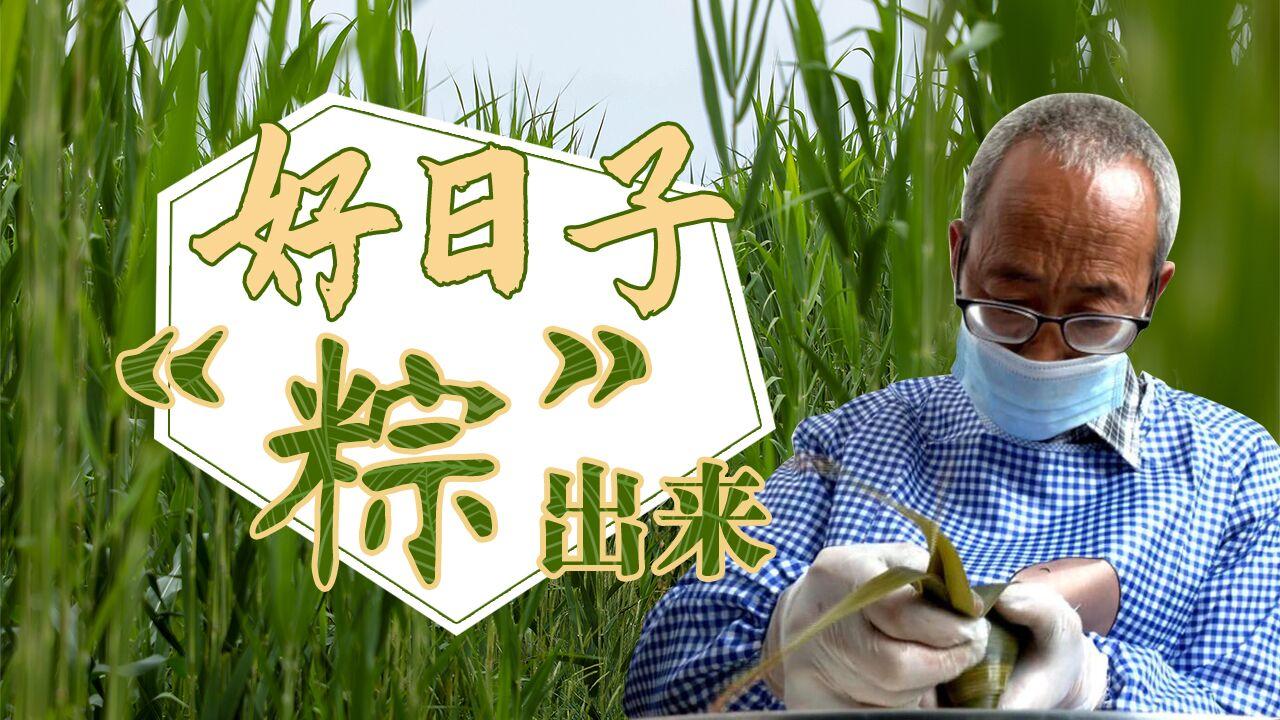 """【脱贫印记】好日子 """"粽""""出来"""