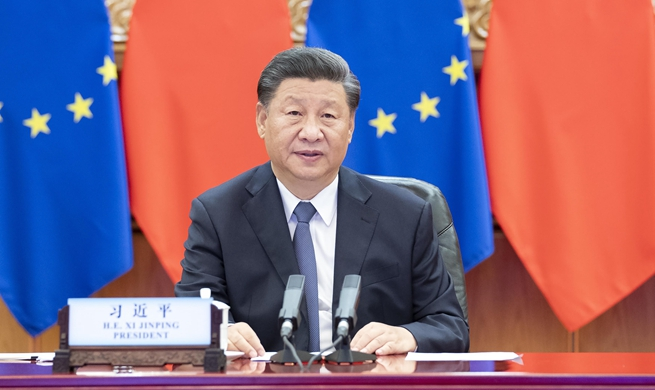 Xi co-hosts China-Germany-EU leaders' meeting via video link