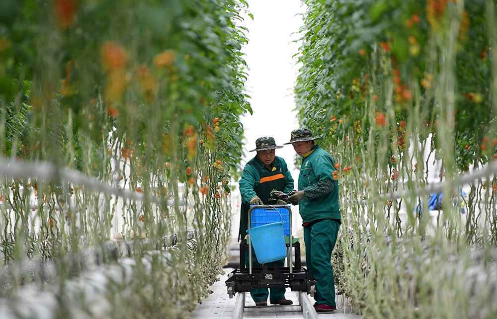 新華全媒+丨兩會·熱點畫報:推動綠色發展 建設美麗中國