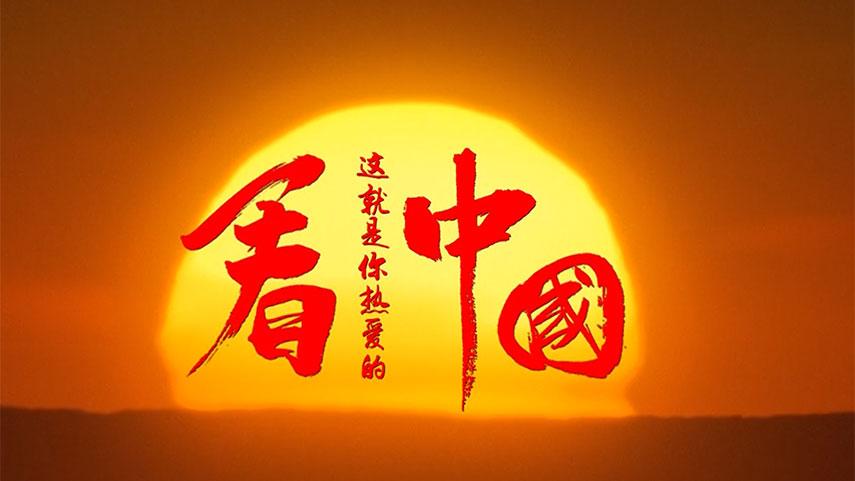 学习进行时 习近平心中的美丽中国
