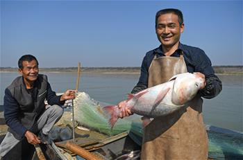 鄱陽湖:人歡魚躍冬捕忙