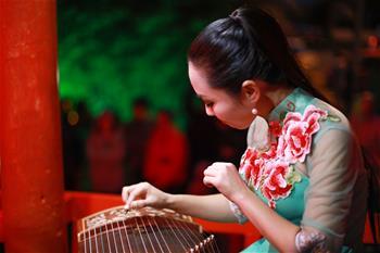 新西蘭黑斯廷斯市舉辦中國燈節