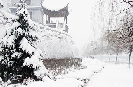 中央氣象臺:江淮江漢雪紛飛 暴雪預警升為黃色